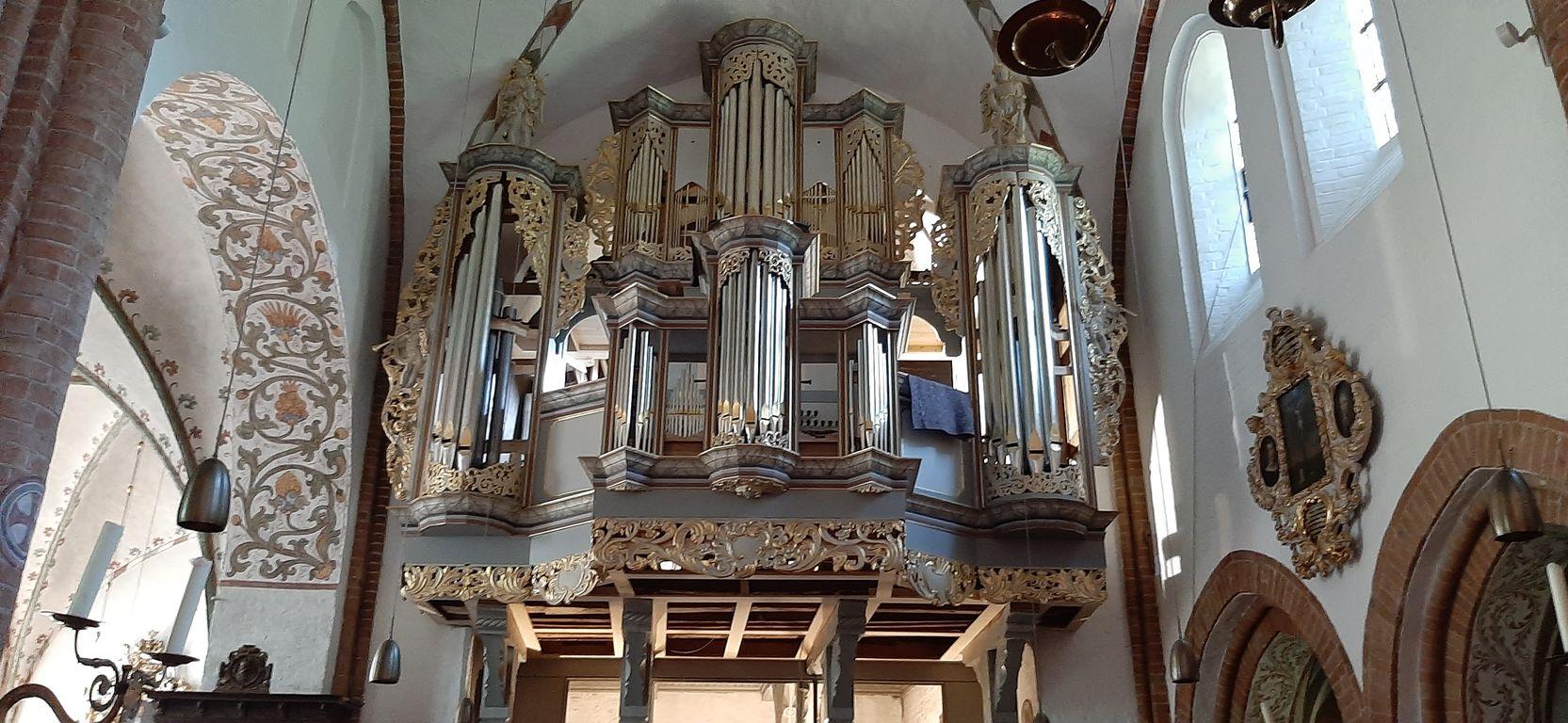 Neuer Orgelprospekt